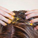 نرم کننده زرده تخم مرغ برای حفظ سلامت موها