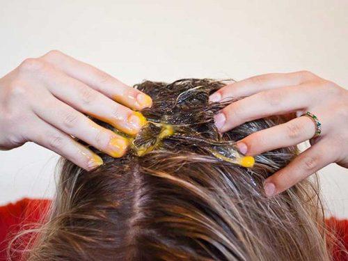 فایده زرده تخم مرغ برای مو