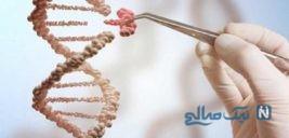 آیا وجود ژن زیبایی حقیقت دارد؟